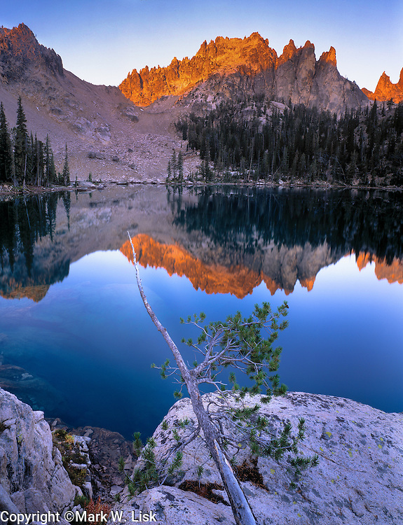 A tenatious pine hangs over the blue water of Upper Baron Lake in the Sawtooth Wilderness area, Idaho.