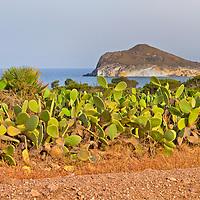 Alberto Carrera, Los Genoveses Beach, Cabo de Gata-Níjar Natural Park, Biosphere Reserve, Almería, Andalucia, Spain, Europe