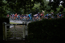 The peloton speed through the rain during Stage 1 of 2019 OVO Women's Tour, a 157.6 km road race from Beccles to Stowmarket, United Kingdom on June 10, 2019. Photo by Sean Robinson/velofocus.com
