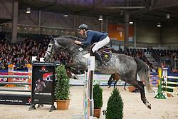 Snels Zoi, (NED), Elton John<br /> Springen Klasse Z-ZZ<br /> KWPN Hengstenkeuring - 's Hertogenbosch 2016<br /> © Hippo Foto - Dirk Caremans<br /> 04/02/16