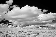 Infrared photograph of desert scrub and clouds.  Fine art photography by Michael Kloth. Black and white infrared photographs
