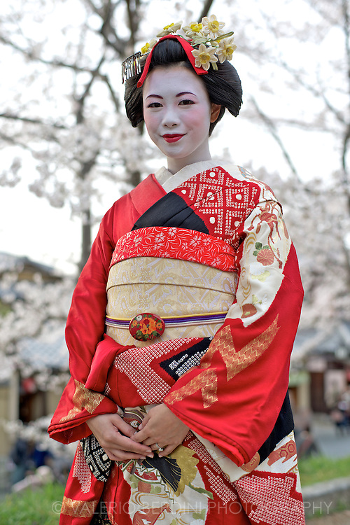 A married woman, dressed in traditional costumes, poses for her husband as a Maiko, an apprentice geisha, during the peak of cherry blossom. Kyoto, Japan