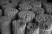 Cinnammon quill in a warehouse, ready for export.