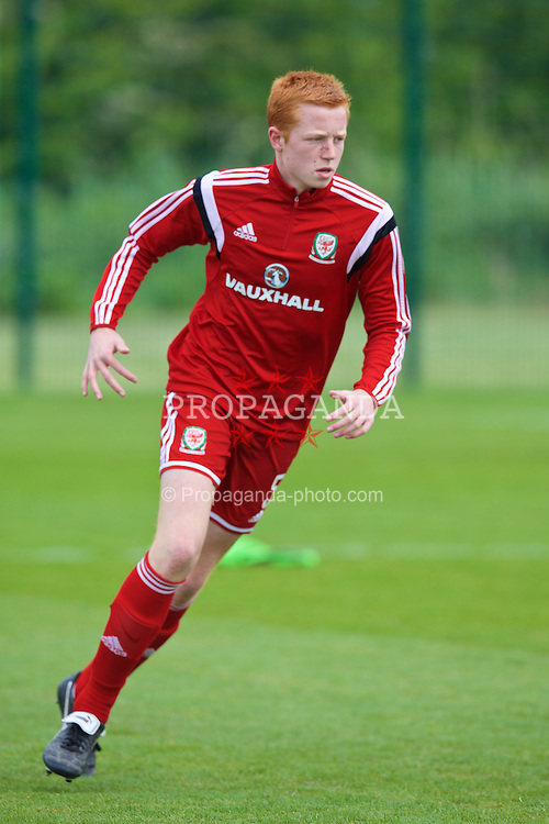 NEWPORT, WALES - Wednesday, May 27, 2015: Regional Development Boys' captain Tom Wright during the Welsh Football Trust Cymru Cup 2015 at Dragon Park. (Pic by David Rawcliffe/Propaganda)