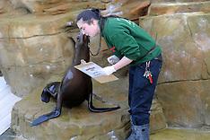 JAN 8 2013 Bedfordshire Whipsnade Zoo Stocktake