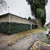 """Nederland, Amsterdam , 6 november 2013.<br /> Groene Muur op Winterdijkplein.<br /> Winterdijkplein: van graffitimuur naar groene gevel.<br /> Bewoners aan het Winterdijkplein in de Rivierenbuurt kijken niet meer uit op een kale gevel vol graffiti. Dankzij bewoonster Pauline Noorlander is dat nu verleden tijd. Zij diende een bewonersinitiatief in om het kale gebouw van de tennisvereniging een groenere en vriendelijkere uitstraling te geven.<br /> <br /> Pauline Noorlander woont schuin tegenover het gebouw. Zij had er genoeg van. Ze benaderde omwonenden en diende, samen met hen, bij het stadsdeel een zogeheten 'bewonersinitiatief' in. Het stadsdeel ging akkoord: """"Ons voorstel was simpel maar doeltreffend. Wij wilden de muur zowel verfraaien als beschermen tegen bekladding. Daarin zijn we geslaagd.""""<br /> <br /> Foto:Jean-Pierre Jans"""