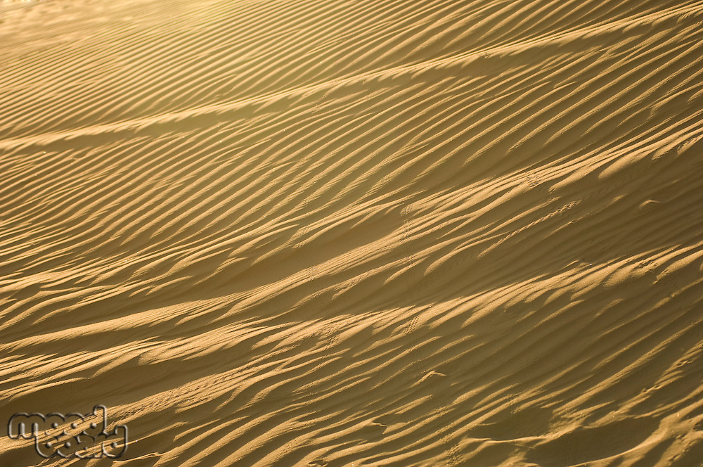 Wind Ripples in Sand Dunes