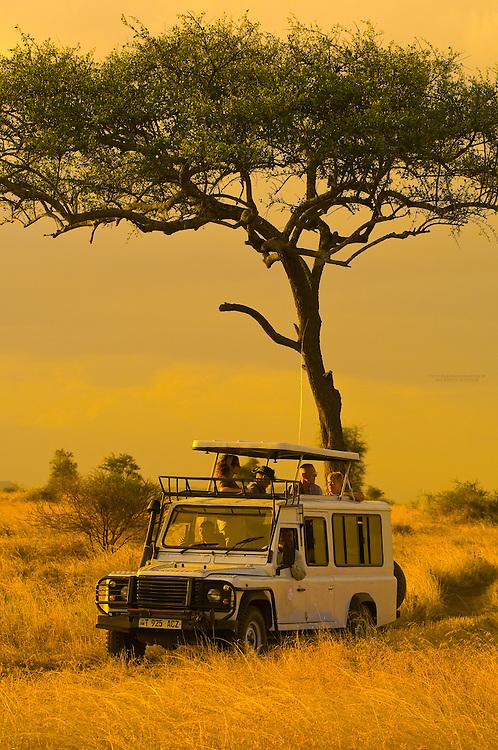Tourists on safari peer out of the pop up roof of a Mountain Travel Sobek safari vehicle, Serengeti National Park, Tanzania