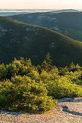 The mountains of Maine's Acadia National Park as seen from the summit of Cadillac Mountain.