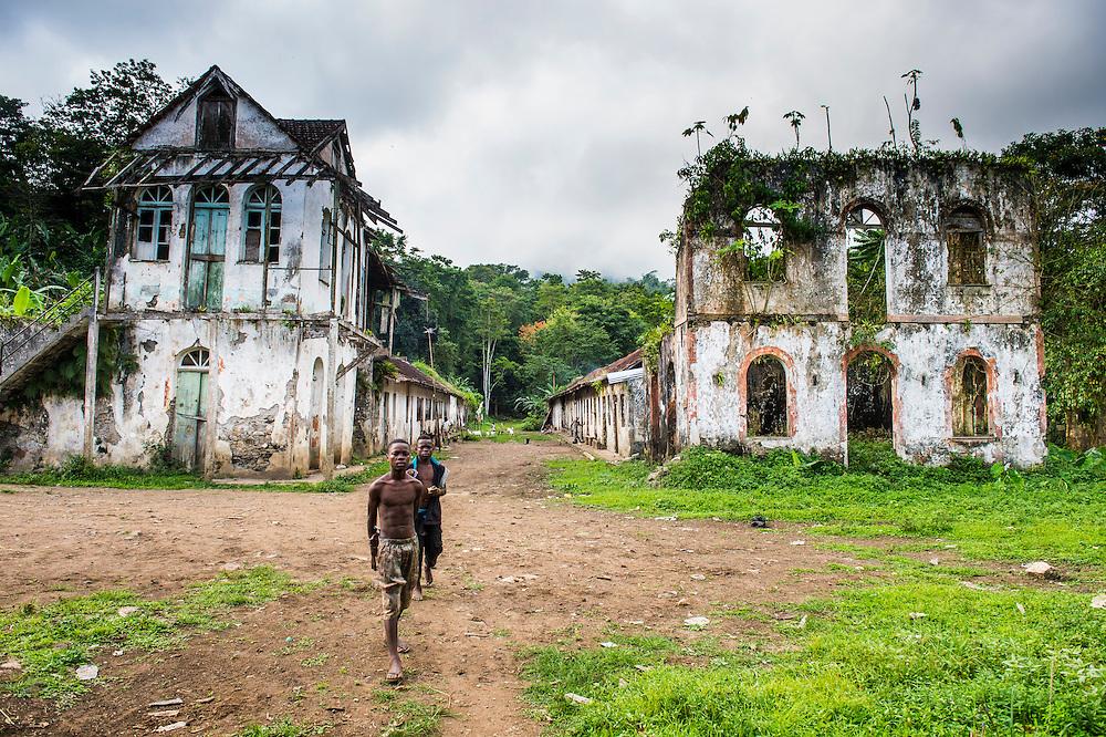 Eine verfallene Kakaofarm mitten im Dschungel