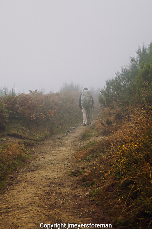 male pilgrim walking along the camino route into Galicia Spain, walking uphill into the fog
