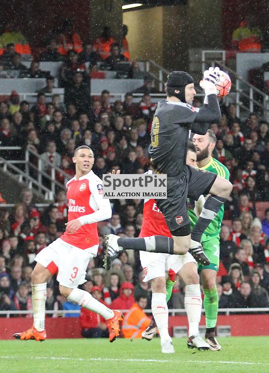 Petr Cech shows safe hands as Sunderlands Steven Fletcher closes down