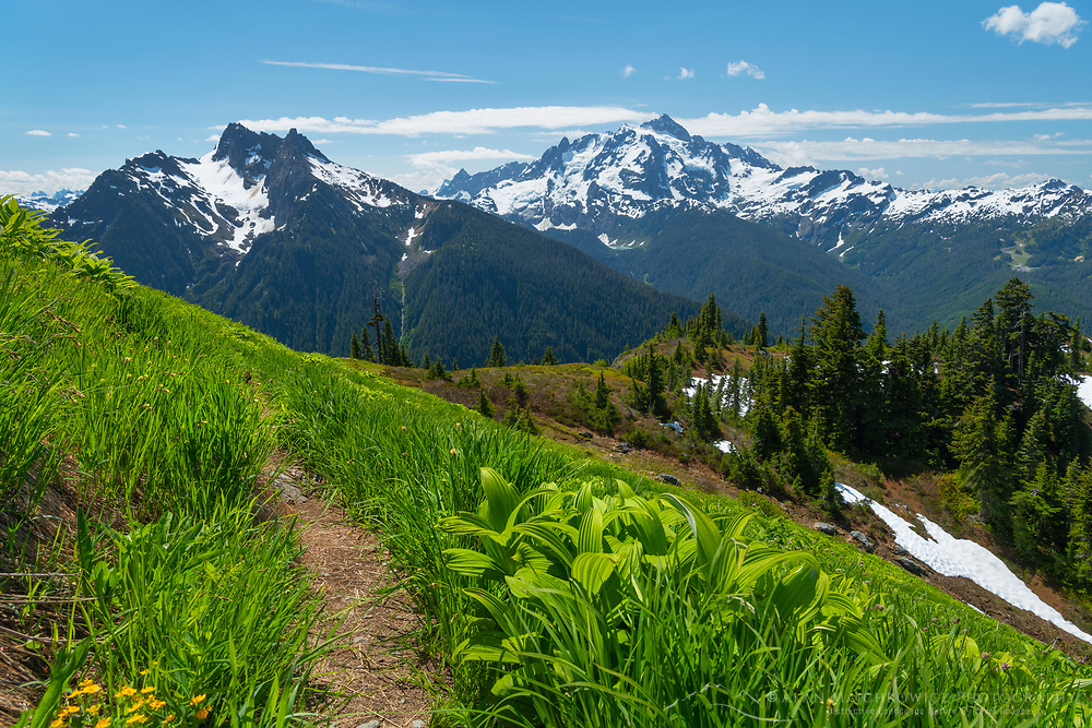 Goat Mountain Trail, Mount Sefrit and Mount Shuksan are in the distance. Mount Baker Wilderness, North Cascades Washington