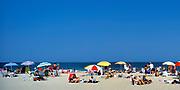 Day at the beach, Cape Cod National Seashore, MA