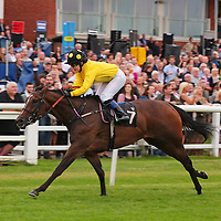 Pucon and Sinead Alderman winning the 5.00 race