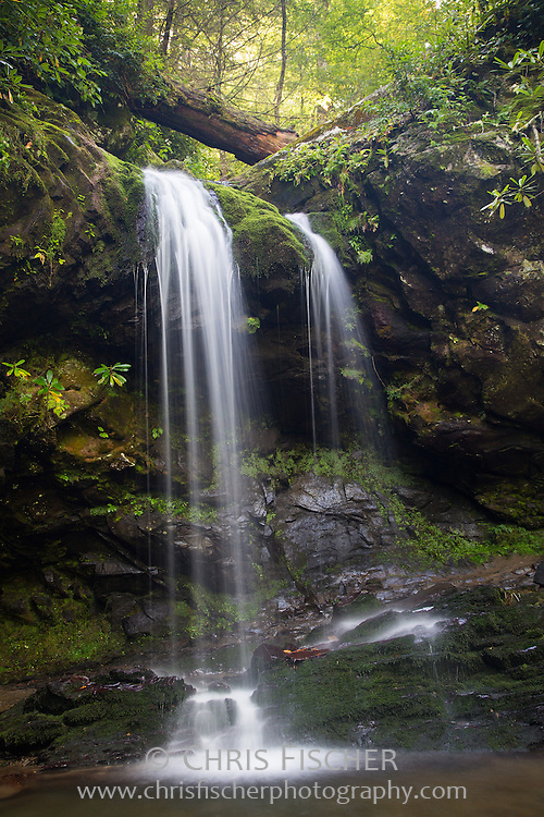 Grotto Falls is a 25 foot waterfall located in Great Smoky Mountains National Park near Gaitlinburg, Tennessee.
