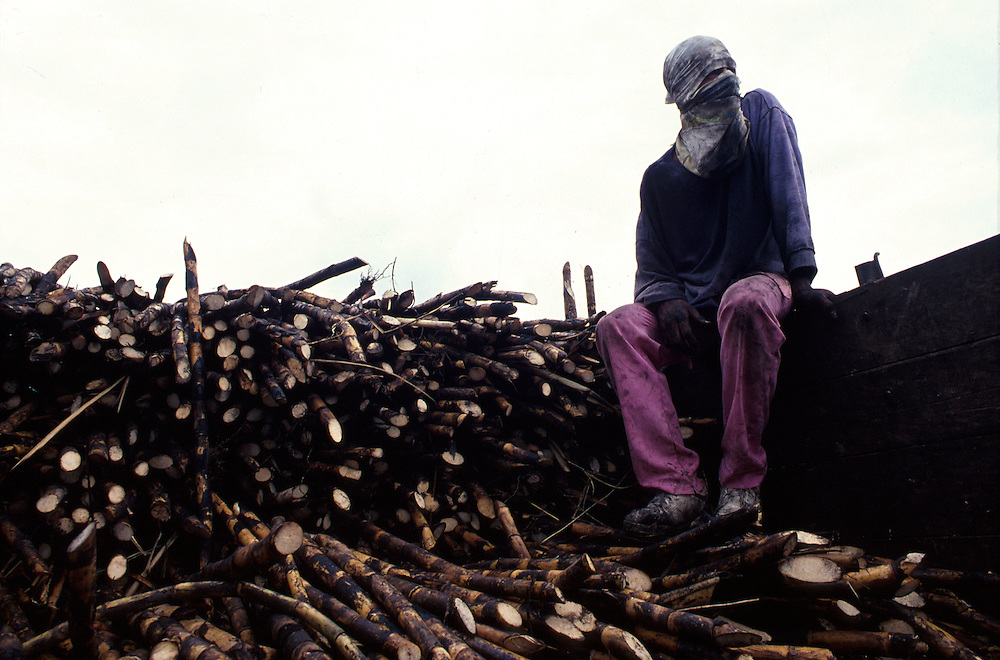 COLOMBIA: Manizales.A sugar cane worker takes a rest from the exhausting work of harvesting