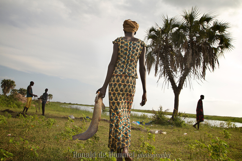 A South Sudanese woman carries home the fish that her husband caught in the Sudd wetland bordering the shores of the White Nile. .The Sudd swamp is the largest wetland in the world. It provides sustenance for millions of fishermen, pastoralists and farmers. The water of the White Nile practically comes to a halt here, causing massive evaporation. Hence the construction of the Jonglei Canal that is supposed to circumvent the wetland. The construction was halted during the civil war in the 90s. New plans speak of a continuation of the construction which might result in serious damage to the environment, wildlife, local lifestyles and regional climate.