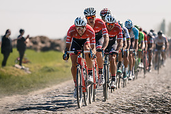 Front of the peloton with Trek - Segafredo leading during the 115th Paris-Roubaix (1.UWT) from Compiègne to Roubaix (257 km) at cobblestones sector 17 from Hornaing to Wandignies, France, 9 April 2017. Photo by Pim Nijland / PelotonPhotos.com | All photos usage must carry mandatory copyright credit (Peloton Photos | Pim Nijland)