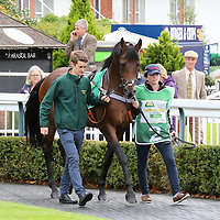 Lingfield 22nd September