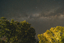 Blick auf Bäume und den Sternenhimmel mit der Milchstraße über Kroatien, aufgenommen am 30.06.2019, Rezanci, Kroatien // view of trees and the starry sky with the Milky Way over Croatia, Rezanci, Croatia on 2019/06/30. EXPA Pictures © 2019, PhotoCredit: EXPA/ Florian Schroetter
