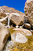 Stream in Borrego Palm Canyon, Anza-Borrego Desert State Park, California USA
