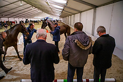 Exell Boyd, AUS<br /> Jumping Mechelen 2019<br /> © Hippo Foto - Dirk Caremans<br />  28/12/2019