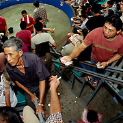 CHIANG MAI, THAILAND - FEB 26 2006: The matches are held in all manner of buildings, from shanty shacks to upscale arenas. In the larger arenas, the winning purses can be $10,000 US or more, with bets raising the stakes even higher. Here an overflow crowd watches a match from stadium seating.  Bird Flu caused the banning of cock fights in 2005, but a persistent movement of Thai's claiming the social significance of the sport and a reduction in Bird Flu cases has allowed the fights to resume. (Photo by Logan Mock-Bunting)
