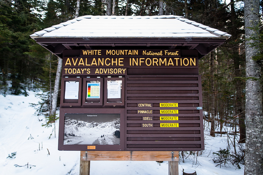 White Mountain National Forest Avalanche Forecast and Conididtions