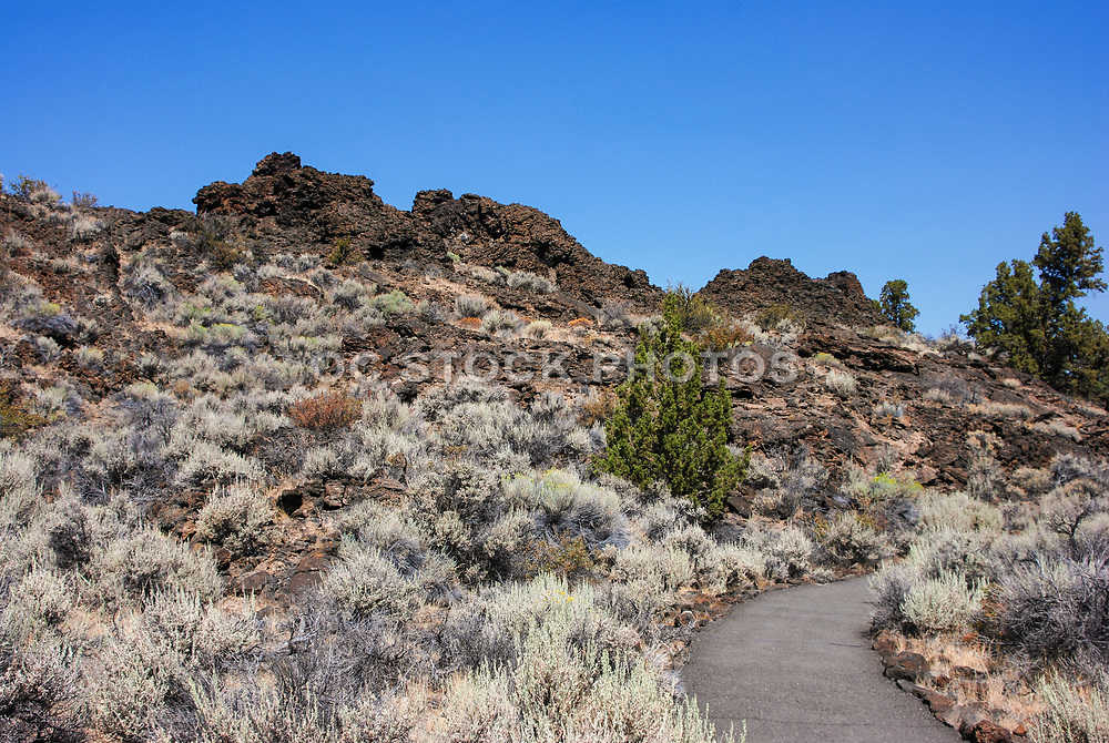 Venting Chimneys at Lava Beds National Monument