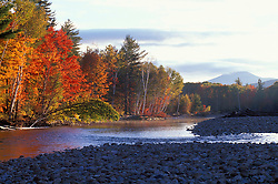 Saco River. Cobble beach.  White Mountain N.F.  Bartlett, NH