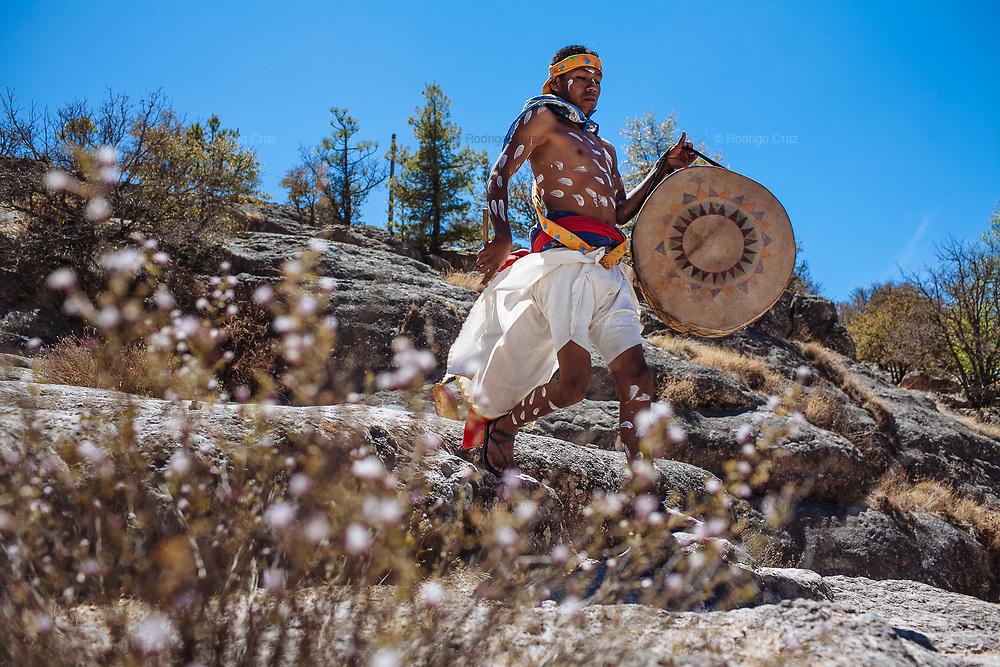 Un joven rarámuri con un tambor baja el cerro corriendo para dirigirse al atrio de la iglesia donde se llevarán a cabo las danzas de Semana Santa en Norogachi, México, el 9 de abril de 2009.