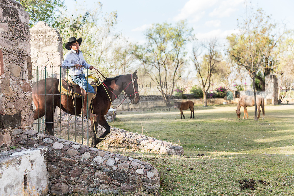 A Mexican charro or cowboy on his horse at a hacienda ranch in Alcocer, Mexico. The Charreada is a traditional Mexican form of rodeo and tests the skills of the cowboy at riding, roping and controlling cattle.
