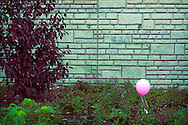Sad Pink Balloon, Chicago, IL.