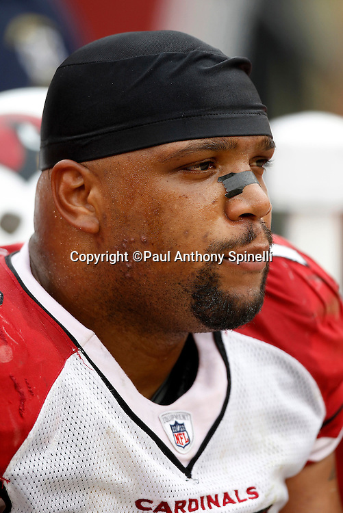 Arizona Cardinals defensive tackle Alan Branch (78) looks on during the NFL week 17 football game against the San Francisco 49ers on Sunday, January 2, 2011 in San Francisco, California. The 49ers won the game 38-7. (©Paul Anthony Spinelli)
