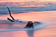 A long exposure of driftwood washed by the waves at sunrise on Kitty Hawk beach.