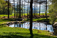 Norway, Sandnes, Rogaland Arboretum.