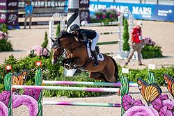 MCINTOSH Samantha (NZL), Ceck in<br /> Tryon - FEI World Equestrian Games™ 2018<br /> 2. Qualifikation Teamwertung 1. Runde<br /> 20. September 2018<br /> © www.sportfotos-lafrentz.de/Stefan Lafrentz