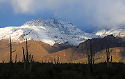 Snow covers the Santa Catalina Mountains in the Coronado National Forest in the Sonoran Desert,Tucson, Arizona, USA.