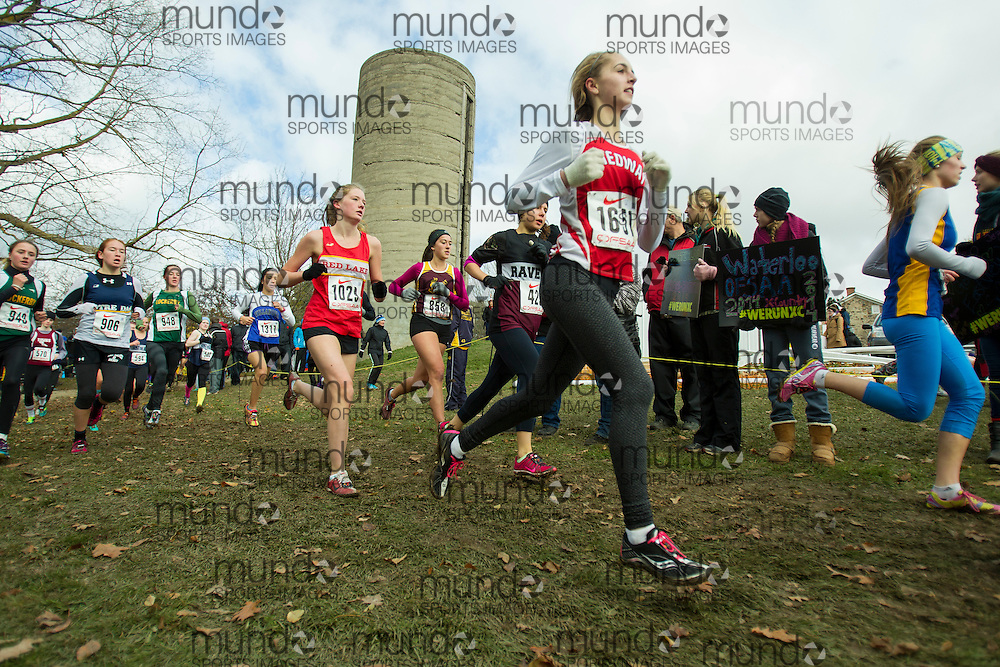 Kylie Paliani of Medway D.H.S. competes at the OFSAA Cross Country Championships in Waterloo Ontario, Saturday, November 1, 2014.<br /> Mundo Sport Images/ Geoff Robins