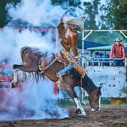 2015 Upper Horton Campdraft and Rodeo
