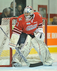 Daniel Altshuller of the Oshawa Generals. Photo by Aaron Bell/OHL Images