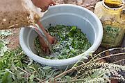 Shantilal making organic fertiliser on his farm Madhya Pradesh, India.