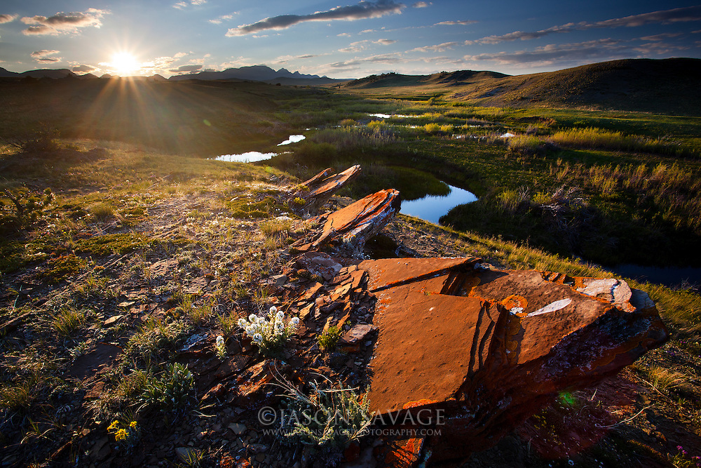 Sunsets over the Pine Butte Swamp Preserve located at the base of the Rocky Mountain Front, Montana.