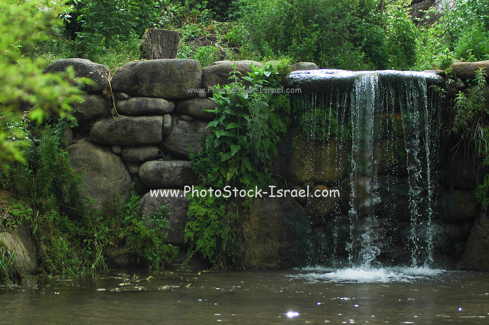 Israel, Golan Heights, waterfall and nature reserve