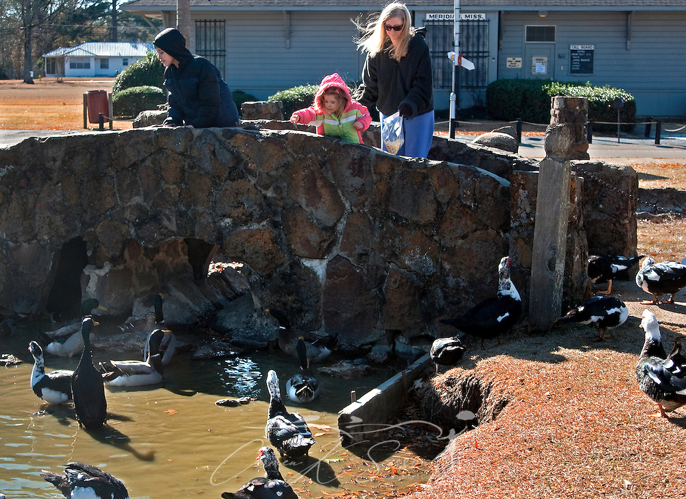From left, Isom Smith, Noelle Smith, and Sarah Smith feed the ducks at Highland Park in Meridian, Miss. on Jan. 12, 2011. A wide variety of birds and waterfowl populate the park, making it a favorite destination for avian hobbyists. (Photo by Carmen K. Sisson/Cloudybright)