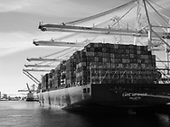 Cargo ship in Seattle harbor in black and white