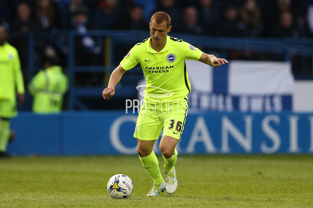 Steve Sidwell with time and space during the Sky Bet Championship Play Off First Leg match between Sheffield Wednesday and Brighton and Hove Albion at Hillsborough, Sheffield, England on 13 May 2016.