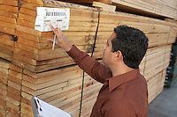 Worker checking label on stack of wood in warehouse head and shoulders