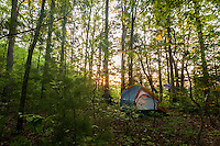 Campsite along Rough Ridge trail in the Cohutta Wilderness, Chattahoochee National Forest. Morning sunrise.